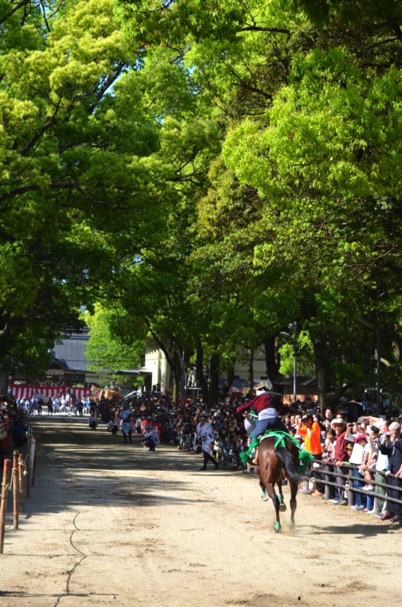 藤森神社の駈馬神事