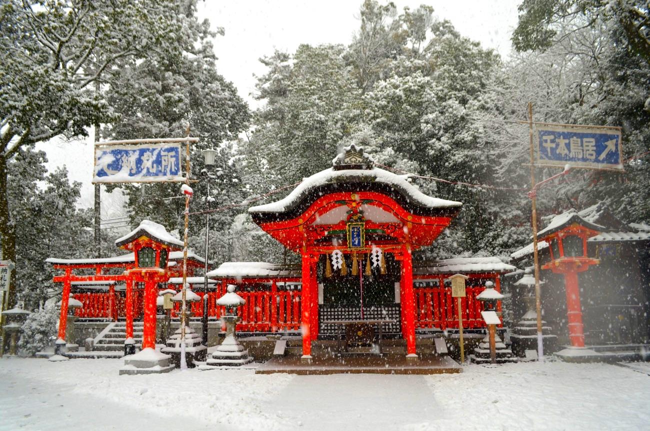 真っ白な雪と朱色のコントラストが美しい