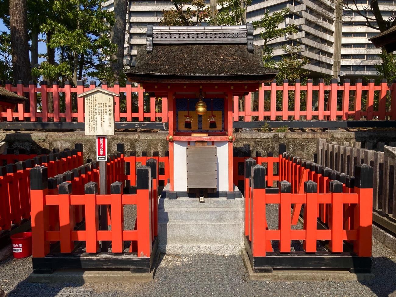 江戸時代初期に建てられた藤尾社の社殿
