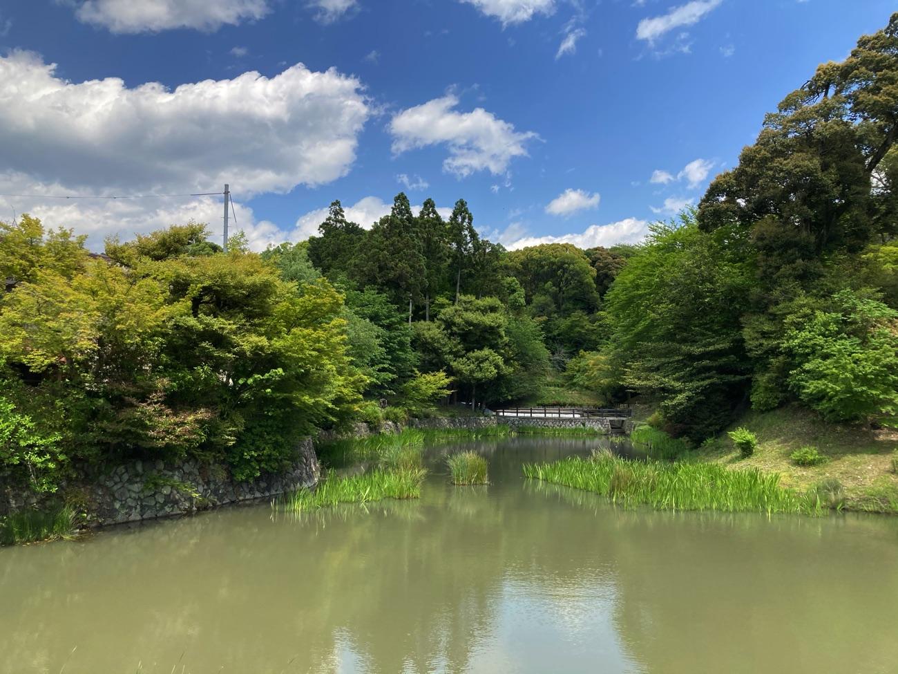 八島ヶ池(おさんば池)