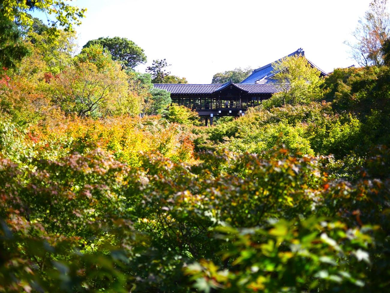 紅葉の名所・東福寺