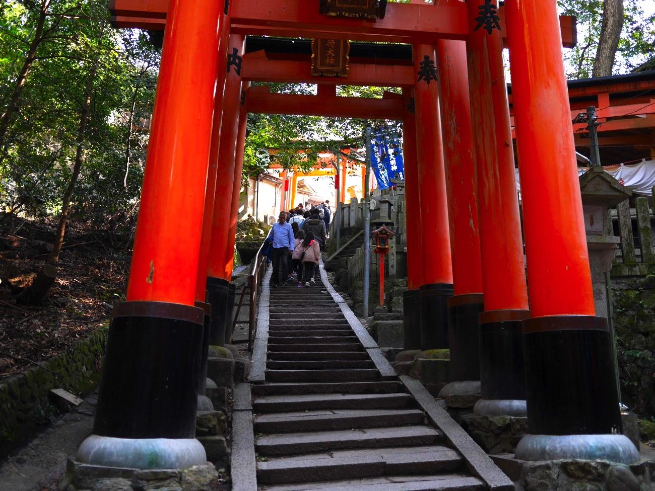 この階段を上れば熊鷹社
